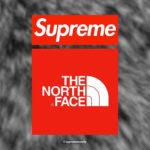 "Supreme|2020AW Week16より ""ノースフェイス"" とのコラボ全型を事前にチェック!抽選 12月12日"